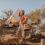 Grand Canyon Eco-Yurt:Explore Arizona's Glamping Scene